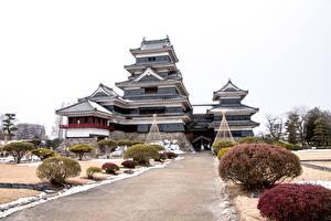 Фото Замок Япония Кусты Matsumoto Castle, Nagano prefecture Города