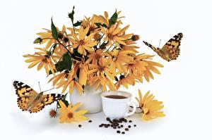 Картинка Кофе Бабочки Натюрморт Чашка Зерна Ваза Белый фон Jerusalem artichoke Цветы