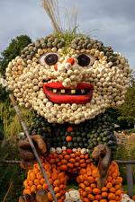 Фотография Креатив Тыква Германия Пожилой мужчина Ludwigsburg Pumpkin Festival