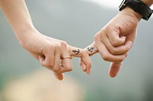 Фотографии Пальцы Вблизи Боке Две Рука Ювелирное кольцо Татуировки Anchor