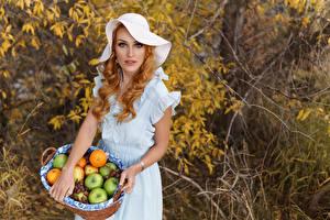 Обои Фрукты Поза Платье Шляпа Рыжих Корзинка молодые женщины