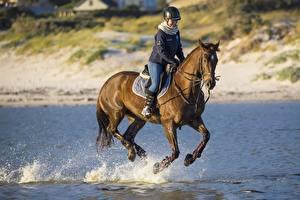 Картинки Лошадь Конный спорт В шлеме Сидит Бег Брызги Животные Девушки
