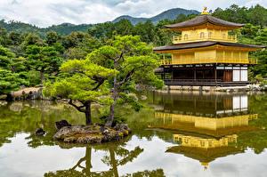 Фотография Япония Киото Парк Пруд Пагоды Деревья Природа