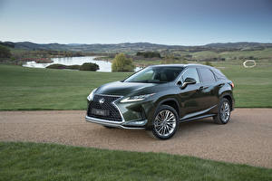Картинки Lexus Зеленый Металлик 2019 RX 350