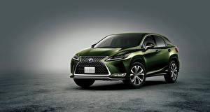 Фото Lexus Зеленые 2019 RX 450h авто