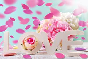Фото Любовь День всех влюблённых Слово - Надпись Английский Цветы