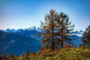 Фотографии Гора Австрия Осень Деревья Природа