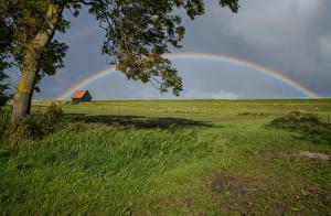 Фото Нидерланды Луга Траве Радуги Kreileroord Природа