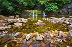 Фотографии Парки Камни Водопады Англия Ручей Природа