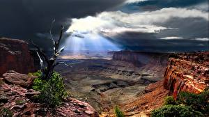 Фотографии Парк США Каньоны Canyonlands National Park, Utah Природа