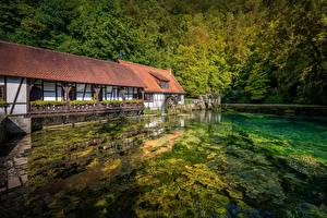 Фотографии Пруд Лес Германия Водяная мельница Blaubeuren, Baden-Württemberg