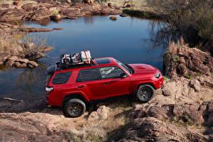 Обои Toyota Внедорожник Красный Металлик 2020 4Runner Venture Edition машина