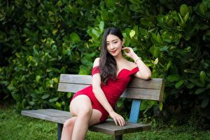 Фотография Азиатка Скамья Сидя Ноги Платье Поза Брюнетка Взгляд молодая женщина