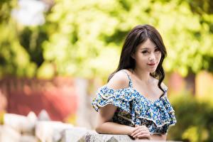 Фотографии Азиатки Боке Платье Взгляд Шатенка Девушки