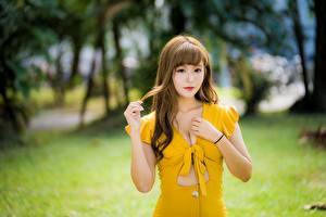 Картинки Азиатки Боке Позирует Рука Платья Вырез на платье Шатенки девушка