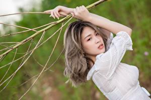 Картинки Азиатки Позирует Ветвь Рука Платья девушка