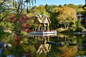 Обои Осень Пруд Камень Пагоды Парк Мюнхен Германия Бавария Westpark Города