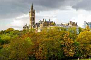 Фотографии Осенние Шотландия Башни Дерево University Glasgow Города