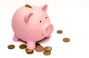 Фото Монеты Деньги Евро Белом фоне Свинья копилка Розовый