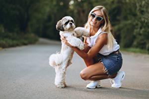 Картинки Собаки Размытый фон Блондинка Очки Смотрят Щенок Девушки Животные