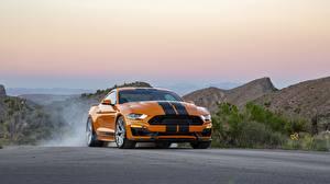 Фотография Ford Оранжевая Полосатая Mustang GT-S 2019 машина