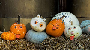 Фотография Германия Тыква Ludwigsburg Pumpkin Festival
