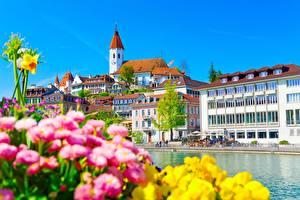 Фотографии Здания Швейцария Aare River, Thun город