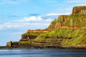Фотографии Ирландия Залив Скале Мха Gaints Causeway Природа