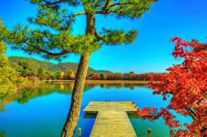 Фотография Япония Киото Пруд Причалы Осенние HDR Деревья Daikaku-ji