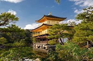 Фотографии Япония Киото Храм Сады Kinkaku-JI Города