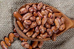 Картинки Много Фасоль бобы Коричневый Продукты питания