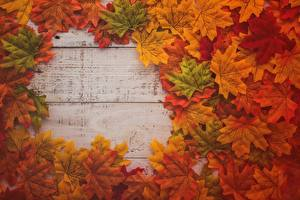 Фото Клёна Листья Доски Шаблон поздравительной открытки