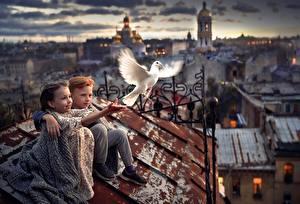 Картинки Голуби Крыша Сидит Мальчик Девочки Боке ребёнок Города