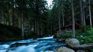 Фотографии Речка Камень Здания Лес Дерево Мха Природа