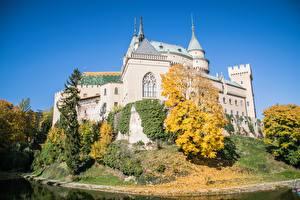 Фото Словакия Замки Парки Осень Bojnice Castle Города
