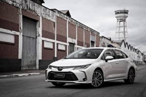 Фотографии Toyota Белый Металлик 2019 Corolla Altis Hybrid Sedan Latam машина