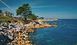 Картинки Америка Побережье Здания Камень Океан Калифорнии Залив Дерево Monterey Bay Природа