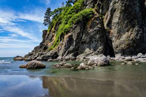 Фото США Камень Вашингтон Скала Quileute Reservation Природа