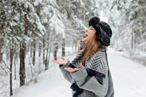 Фотография Зима Снег Шапки Шатенка Языком Руки Смешной молодые женщины
