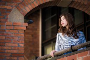 Фотография Азиатки Боке Шатенки молодая женщина