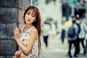 Фото Азиаты Размытый фон Поза Шатенки Взгляд молодая женщина