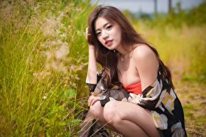 Фотографии Азиатки Размытый фон Поза Сидя Шатенки Взгляд Девушки