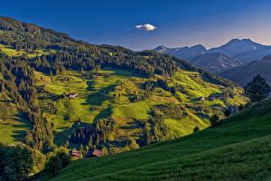 Картинки Австрия Гора Лес Луга Здания Пейзаж Село Thalgau Grossarl