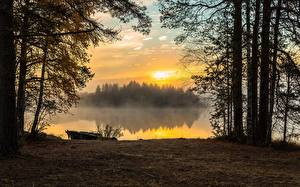 Картинки Осенние Лодки Рассвет и закат Озеро Тумане Дерево Природа