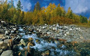 Фотография Осень Камни Ручеек Природа