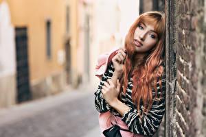 Фотографии Размытый фон Стена Руки Волосы Смотрит Рыжая молодые женщины