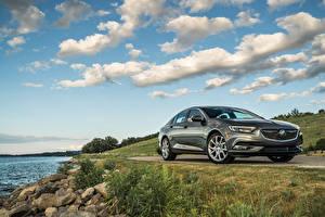 Картинка Buick Металлик Серая 2019 Regal Avenir машины