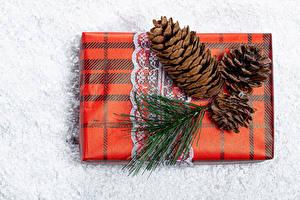 Фотография Рождество Подарки Шишки На ветке