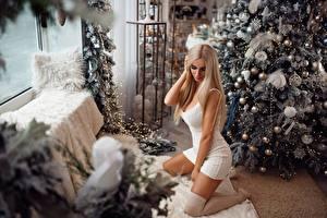 Картинки Рождество Красивая Платье Блондинка Nikolay Kashuba молодая женщина