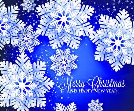 Фотографии Рождество Векторная графика Английский Снежинка